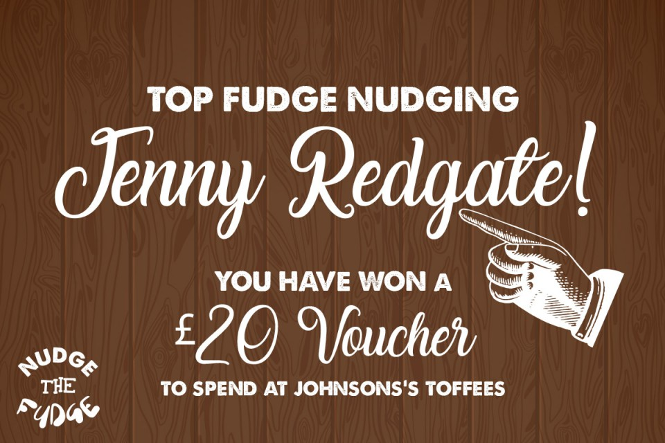 Nudge the Fudge Winner